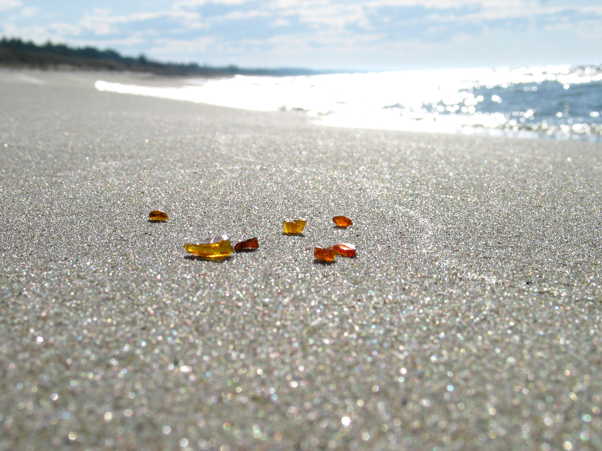 Where the shores are strewn with Polish amber