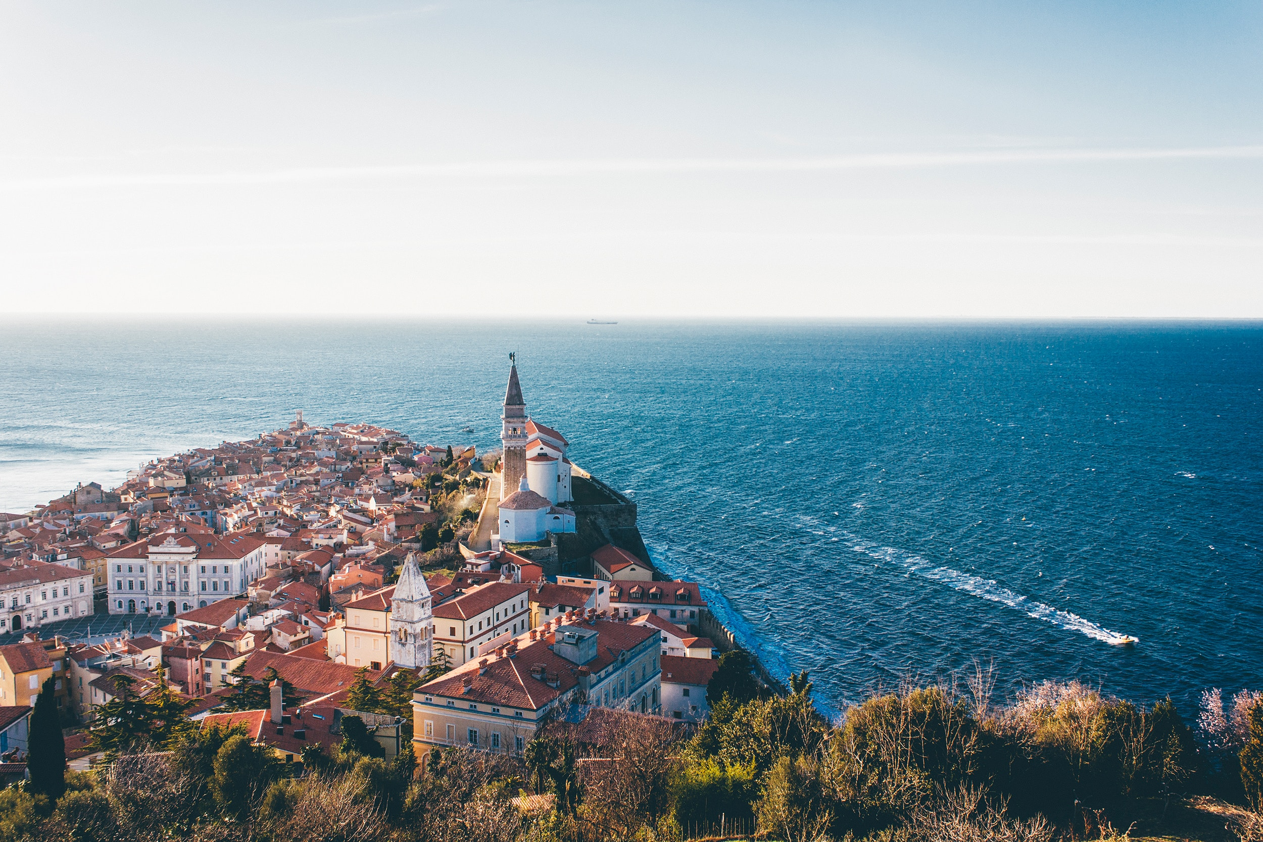 The revival of the Slovenian economy
