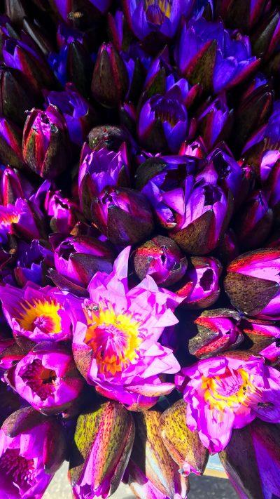 Lotus bouquets
